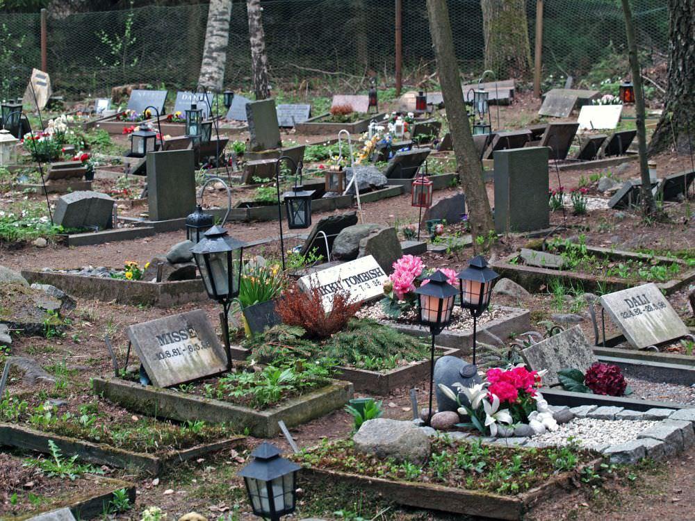 Sie können den Hund auch auf einem Tierfriedhof bestatten. In einem Hundesarg oder einer Urne. Meistens wird der Grabplatz für mehrere Jahre gepachtet und kann individuell mit Grabstein, Blumen usw. gestaltet werden.
