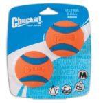 idealer Ball zum Apportieren: Jack Russell beschäftigen