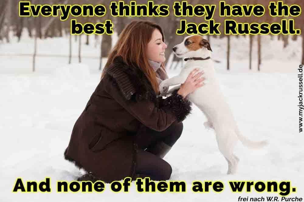 Eine Frau streichelt ihren Jack Russell im Schnee