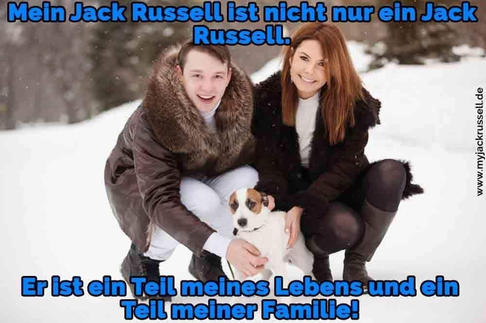Ein paar umarmt ihren Jack Russell