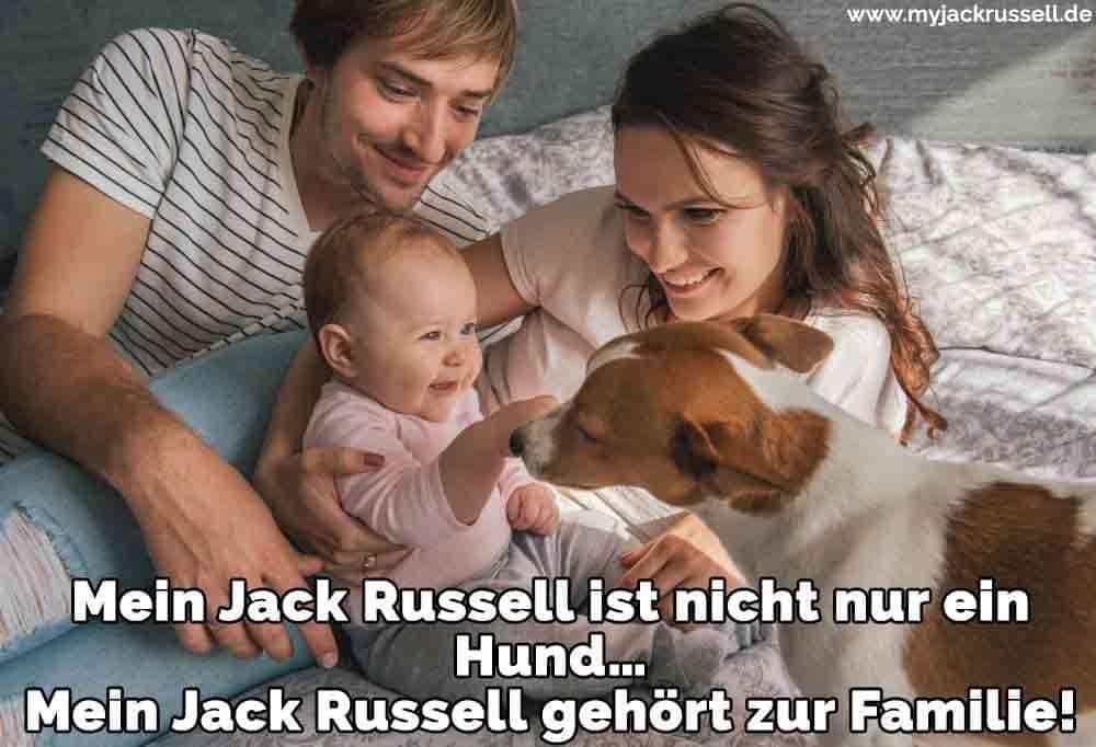 Eine Familie und ihr Jack Russell im Bett