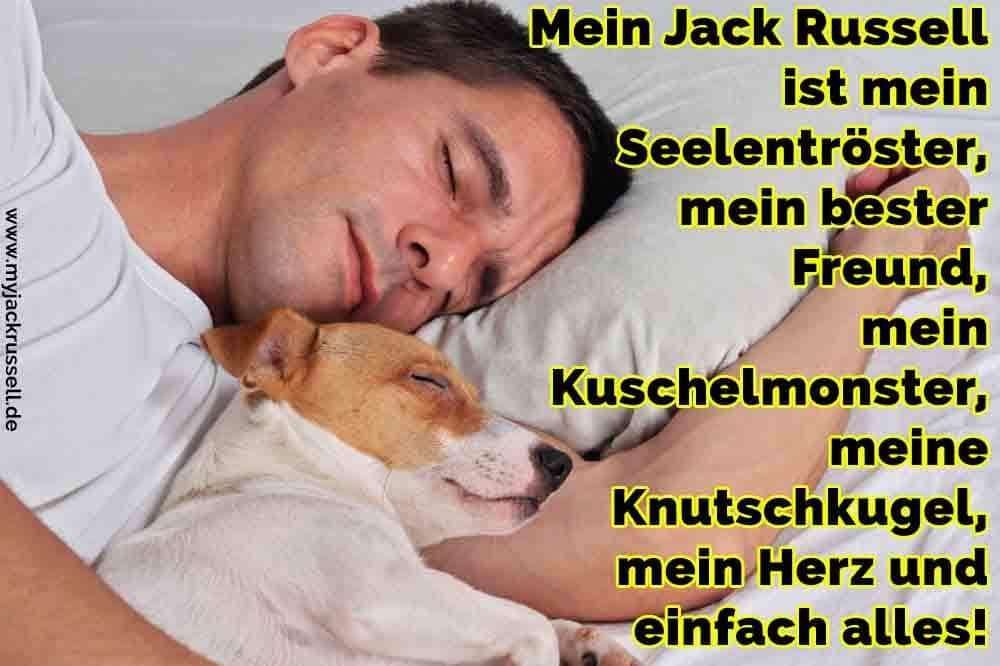 Ein Mann schläft mit seinem Jack Russell