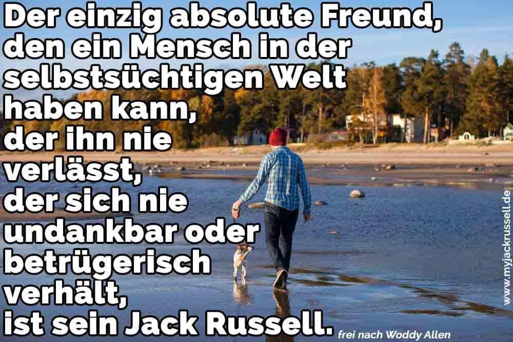Ein Mann und sein Jack Russell am Strand