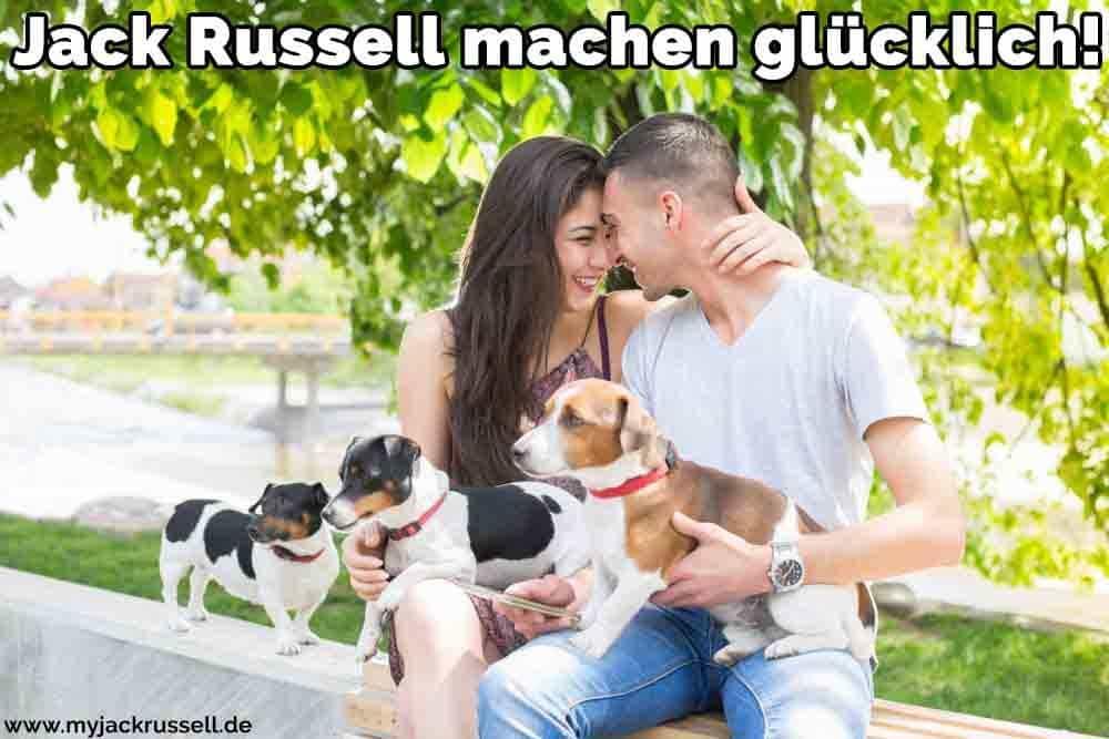 Ein Paar und ihr Jack Russell