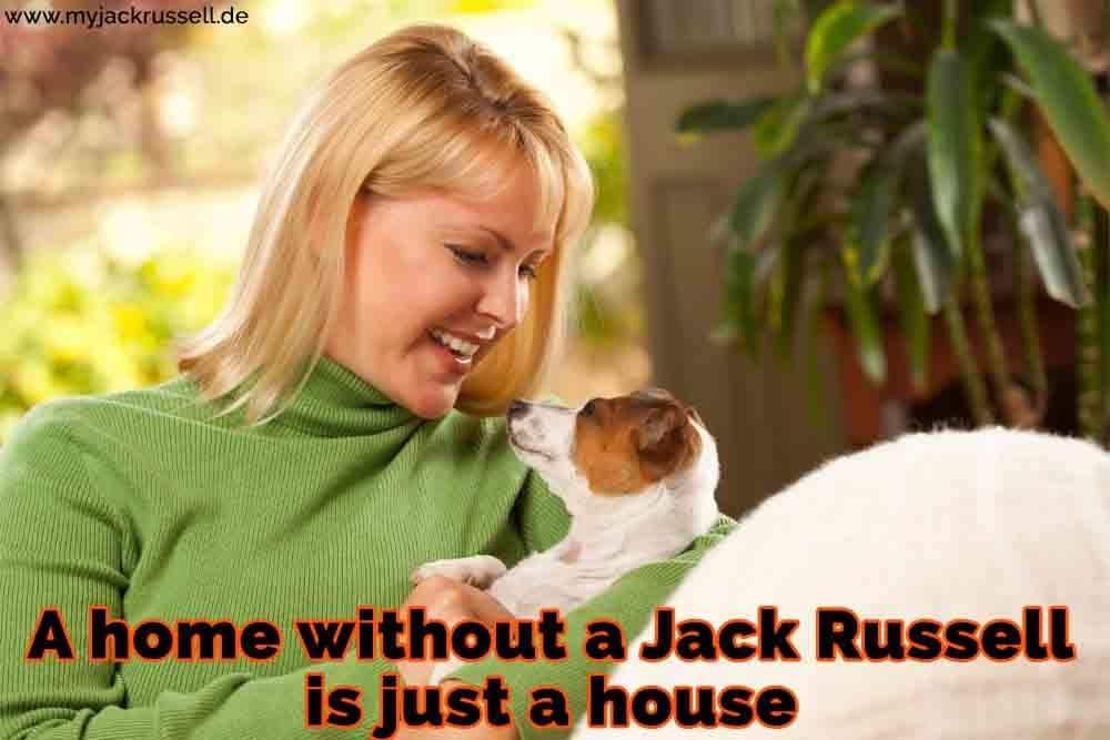 Eine Frau unarmt ihre Jack Russell