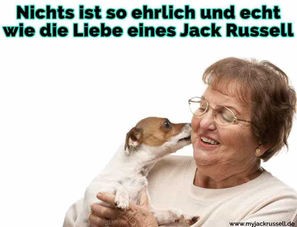 Ein Jack Russell leckt seine Besitzer