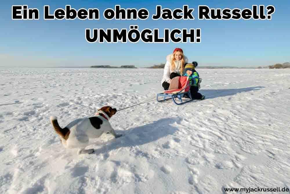 Eine Familie und ihr Jack Russell im Schnee